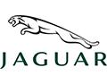 120x94-Jaguar